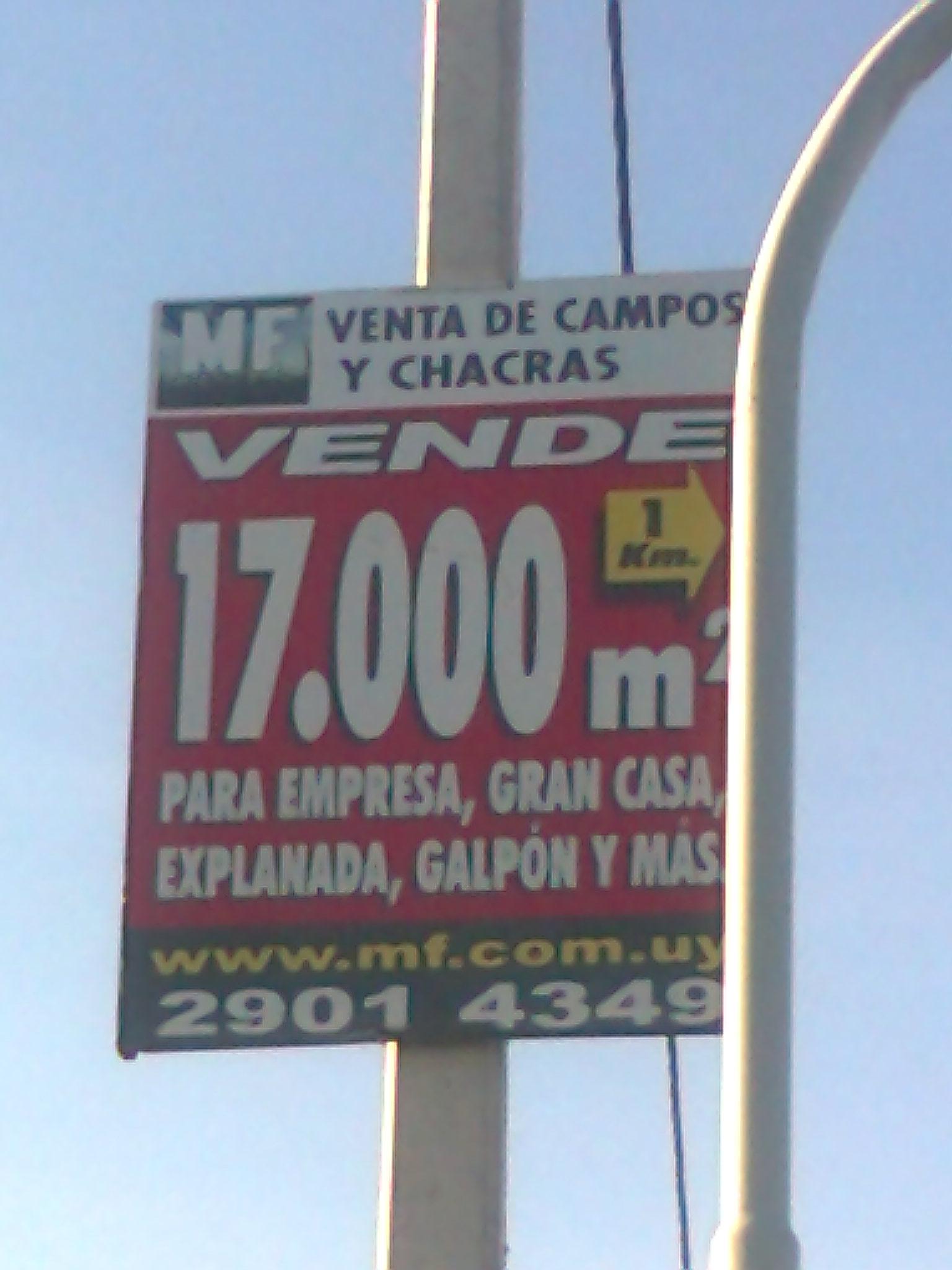 7 cartel, venden chacras ponen logística